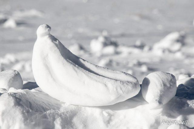 白樺湖ロイヤルヒルスキー場