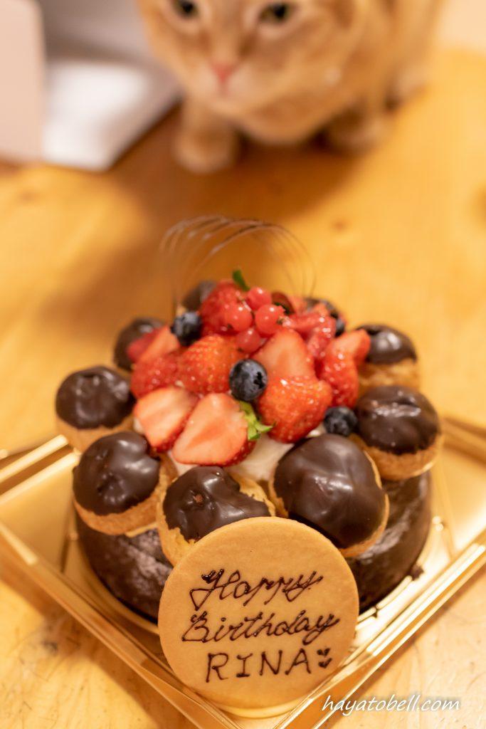 猫 レオ 誕生日ケーキ